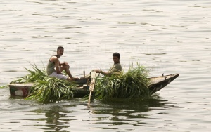 TR-0017 Men sitting in small boat on the river Nile carrying fod