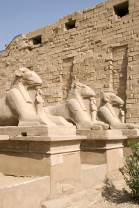 TR-0103 Avenue of sculptured ram-headed sphinx Karnak Temple Egy