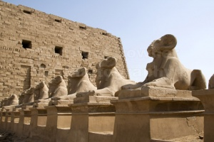 TR-0106 Avenue of sculptured ram-headed sphinx Karnak Temple Egy