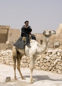 TR-0119 A tourist policeman sitting on his camel