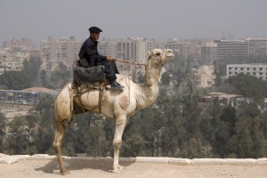TR-0120 A tourist policeman sitting on his camel