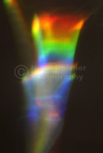 AB-0086 Spectrum abstract